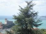 Castello di Lerici.jpg